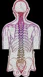 diagnoza u ortopedy